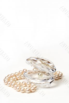 Shell with pearls