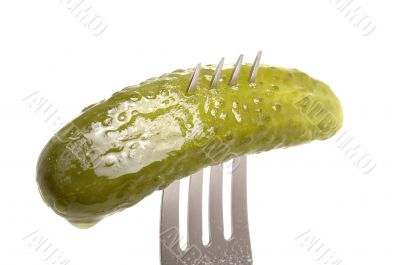 Salted cucumber on fork