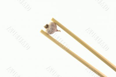 Garlic on sticks