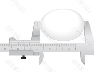 measuring tool and egg