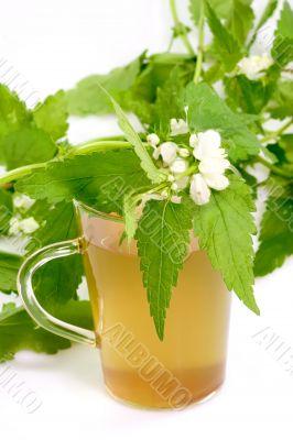 Healthy herb tea