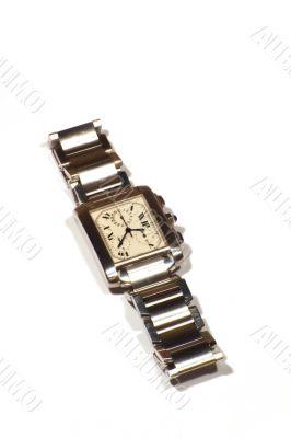 Posh Steel Watch