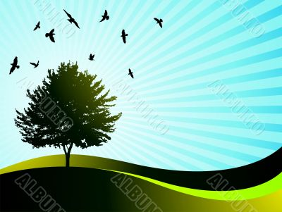 vector  landsape with tree and birds