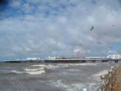 Seagulls Over Sea at Blackpool with Pier in Distance