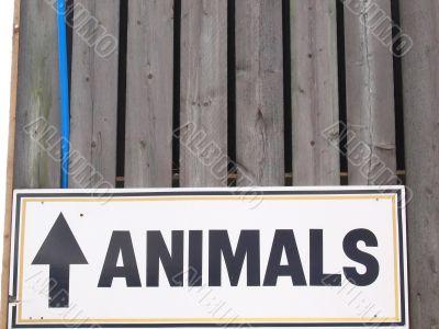 Animals Up