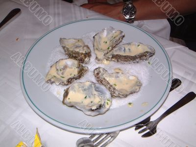 Six Oysters Four Eaten