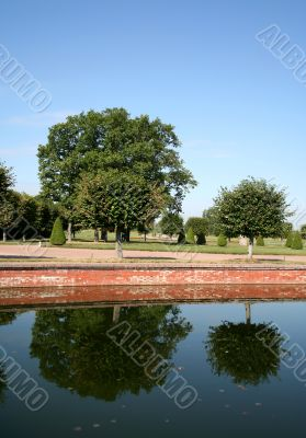Two trees are reflected in the calm pond
