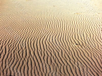 Waves in the sand.