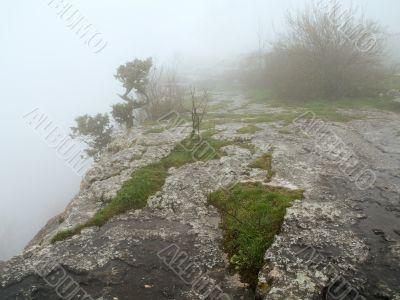 morning mist fog top precipice plateau tableland