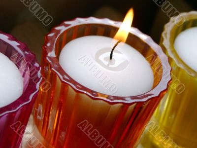 Potted candles