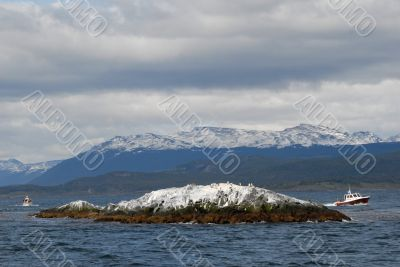Two ships in the Beagle Channel