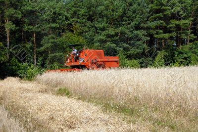 harvester harvesting a grain field
