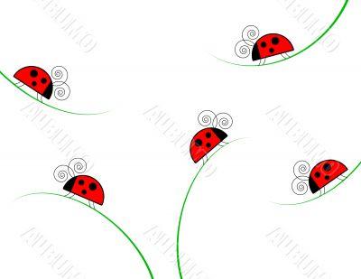 Ladybugs on Grass on White Background