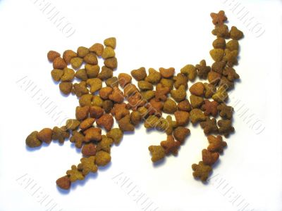Dry forage for cats