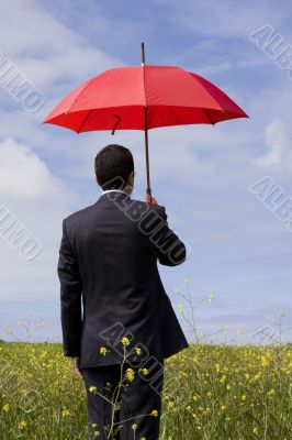 The insurance agent