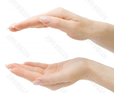 Woman hands holding anything from top and bottom isolated with c