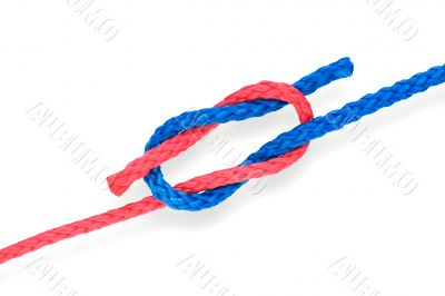Fisher`s knot 01