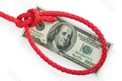 Money and knot 03