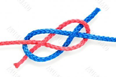 Fisher`s knot 07