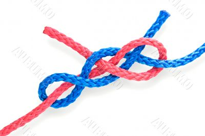 Fisher`s knot 08