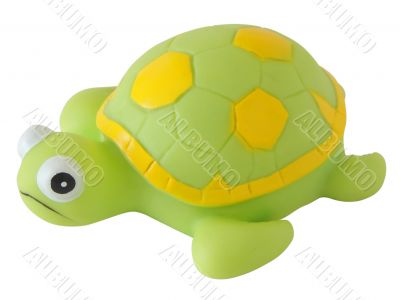 Toy green turtle