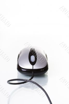 Mouse device isolated with reflection