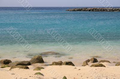 Beach in the Tropics
