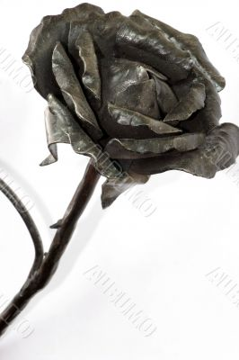 Rose from the metal