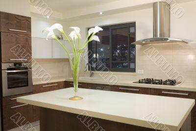 Kitchen luxury design