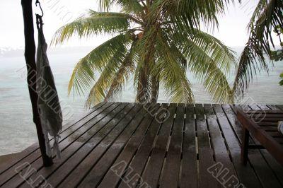 tropical viewpoint
