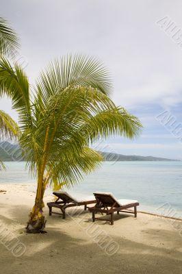 tropical exotic beach