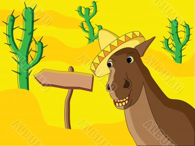 Mexican Horse