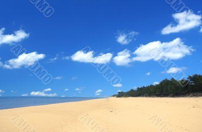 beach with beautiful cumulus