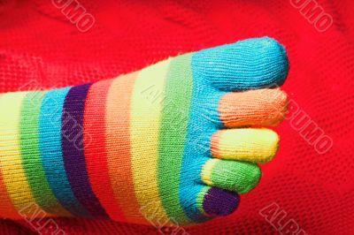 Striped Knit Socks