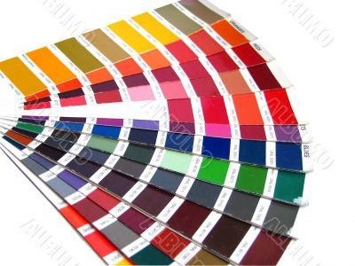 color sample for business