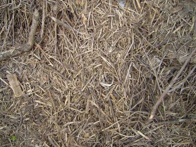 straw dust