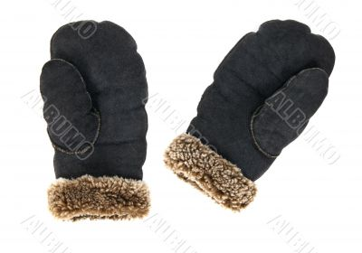 Leather mittens on white background