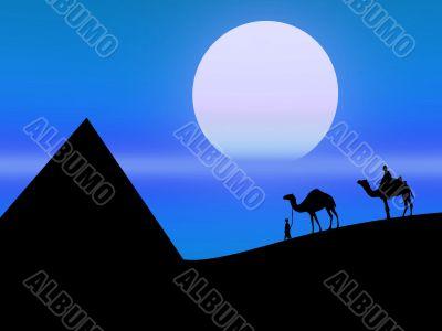 Desert in the night