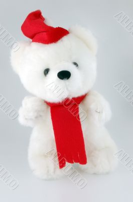 Teddy bear with Santa hat on a white background