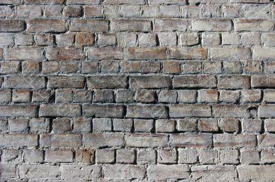 Bricks. texture