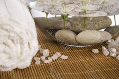 white wellness products