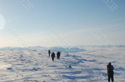 north pole walk