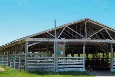 Cattle Barn Close-up