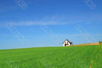 little house in grass field