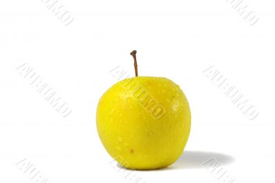 freshness yellow apple