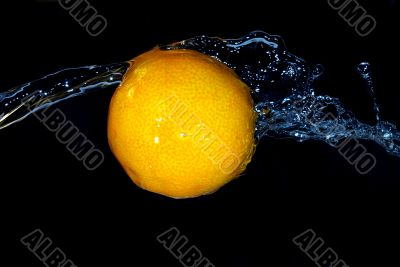 tangerine freshness motion in cold  water