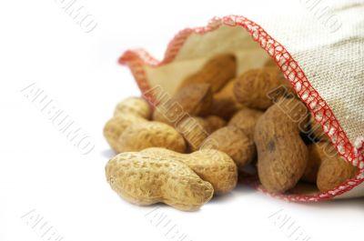 Bag with a peanut