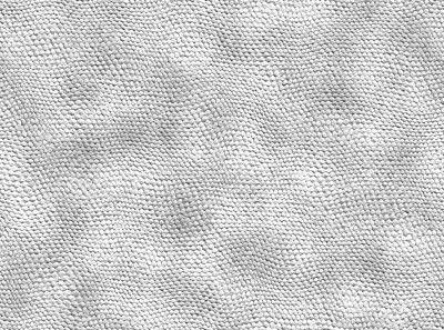 Grey reptile skin