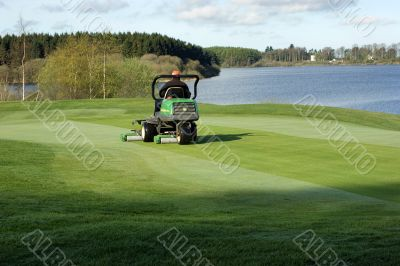 Cut grasses in golf cours