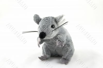 grey toy mouse